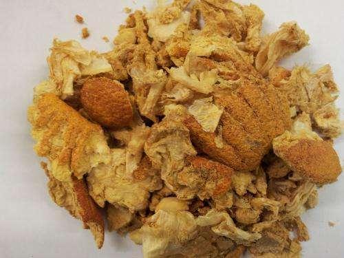 Orange flour for gluten-free bread