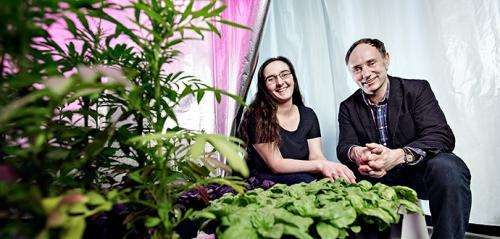 Plants communicate what type of light they want
