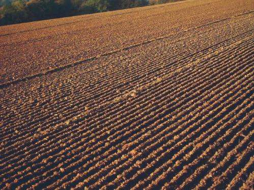 Policies using carbon capture and storage in soil are impractical and costly say experts