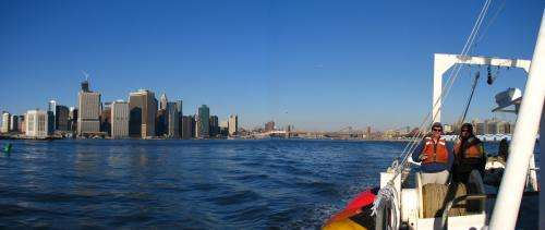 Post-Sandy, Long Island barrier systems appear surprisingly sound