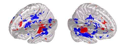 Musical brain-reading sheds light on neural processing of music