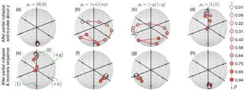 Physicists 'uncollapse' a partially collapsed qubit