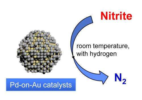 Rice scientists ID new catalyst for cleanup of nitrites