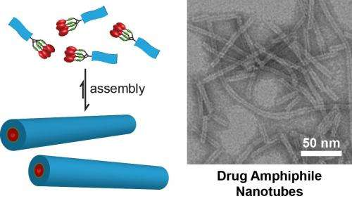 Scientist studies how to turn cancer drugs into their own delivery systems