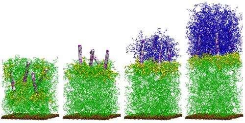 Self-regenerating Composites