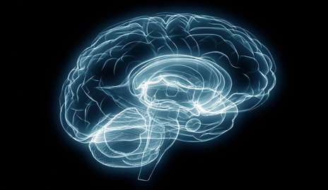 Shared brain disruption illustrates similarities between mental illnesses