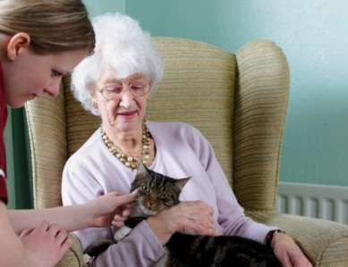 Study shows need for improved empathic communication between hospice teams and caregivers