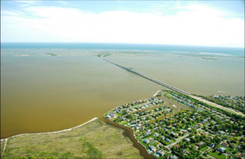 Trace element's central role in harmful algal blooms