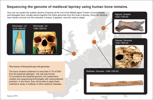 Unraveling the genetic mystery of medieval leprosy
