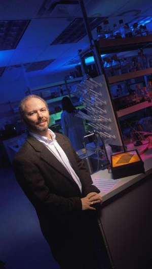 WSU researchers link DDT and obesity