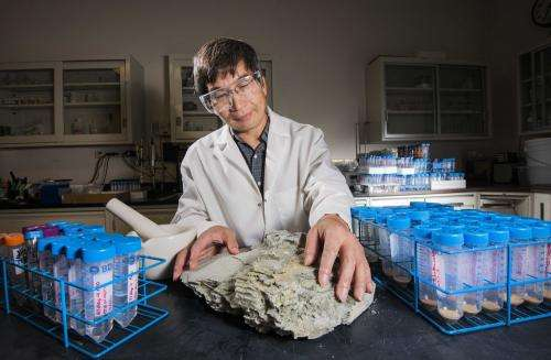 Study could help improve nuclear waste repositories