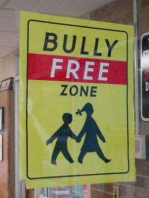 Youth bullying because of perceived sexual orientation widespread and damaging
