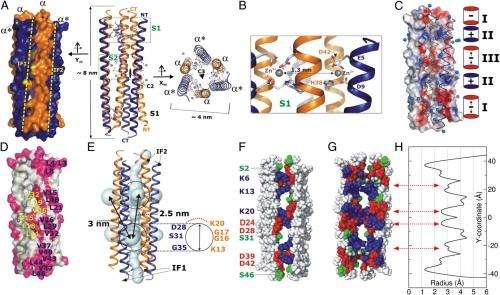 Antibiotics 2.0: The atomic structure and mechanism of mammalian host-defense peptides