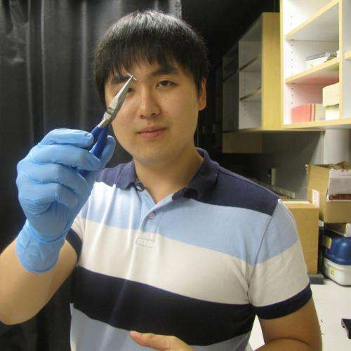 3-D Microscope Method to Look inside Brains