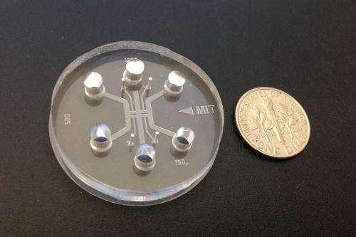 A microchip for metastasis