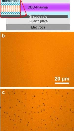 Biomedical applications of plasma technology