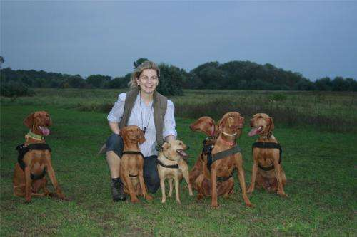 Can walkies tell who's the leader of the pack?