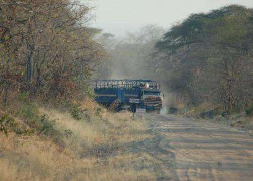 Compromise needed on roads through sensitive wild areas