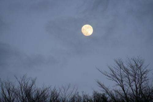 Contradictory findings about the effect of the full moon on sleep