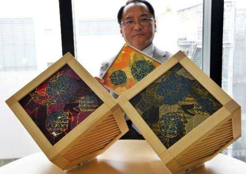 Hiroshi Segawa, a professor at University of Tokyo's Research Centre for Advanced Science and Technology (RCAST), displays proto