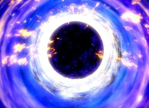 How much of the universe is black holes?