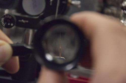 Laser makes microscopes way cooler