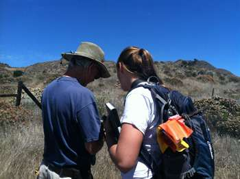 Native vegetation makes a comeback on Santa Cruz Island