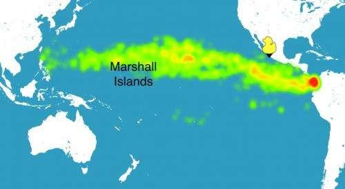 Ocean debris leads the way for castaway fisherman