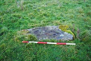 Prehistoric rock art engraving discovered in Brecon Beacons