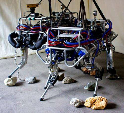 Smarter HyQ robot squat-jumps and does flying trots  (w/ video)