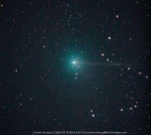 Three comets for northern hemisphere observers