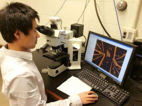 'Topological insulators' promising for spintronics, quantum computers