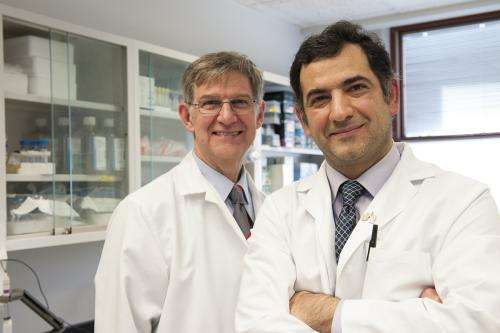 Researchers identify risk factors for little-known lung infection