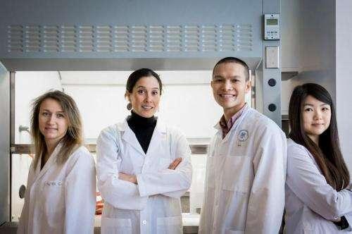 Researchers trace HIV evolution in North America