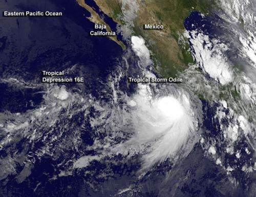Tropical Storm Odile expected to 'eat' Tropical Depression 16E