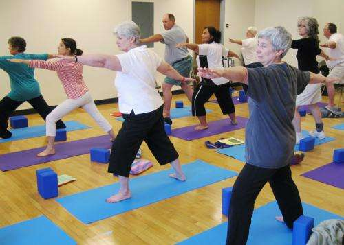 Study suggests hatha yoga boosts brain function in older adults