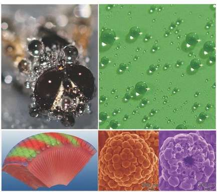 Researchers mimic fly eye to produce superhydrophobic anti-fogging nanostructures