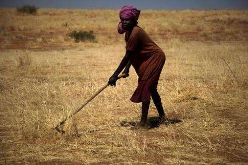 A handout picture taken on January 16, 2014, and released by the United Nations-African Union Mission in Darfur shows a farmer w