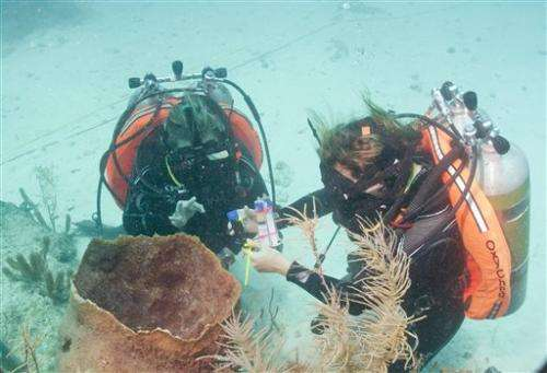 Cousteau nears end of underwater living experiment
