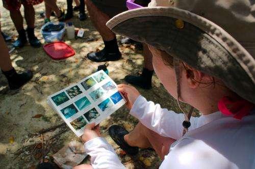 Diving into biodiversity