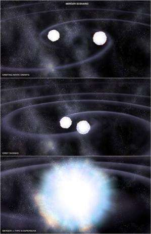 Type Ia supernovae stem from the explosion of white dwarfs coupled with twin stars