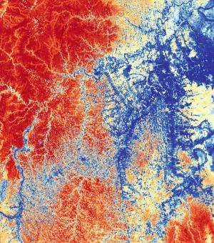 Mapping reveals targets for preserving tropical carbon stocks