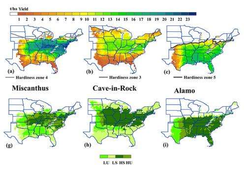 Model evaluates where bioenergy crops grow best