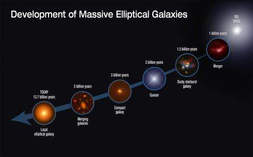 Universe's early galaxies grew massive through collisions