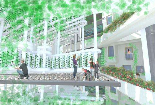 Vertical farms offer a bright future for hungry cities