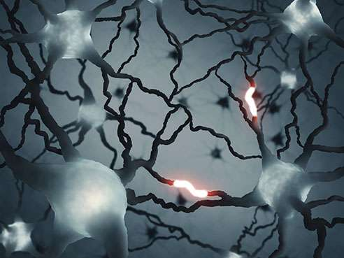 Study suggests potential therapy for second most common form of dementia