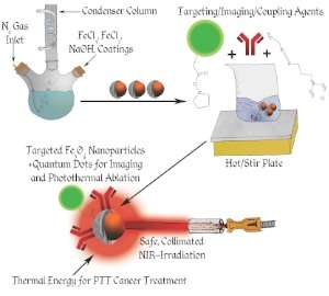 Nanoparticles infiltrate, kill cancer cells from within