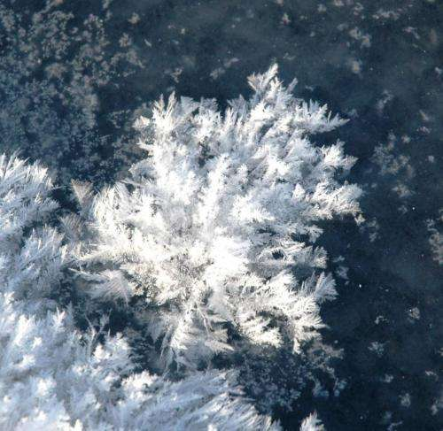 Arctic sea ice helps remove CO2 from the atmosphere