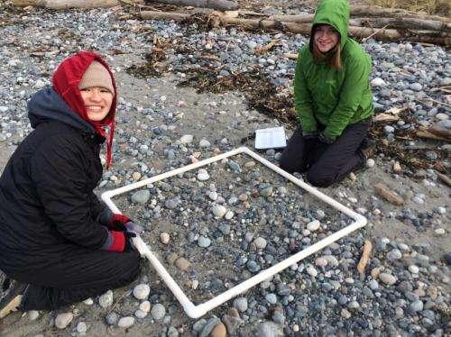 Citizen scientists take on problem of Pacific plastics