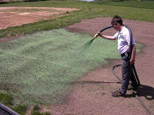 Researchers study hydromulches with guar gum substitutes